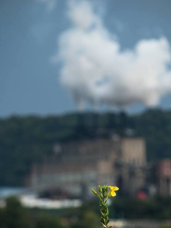 A Community Conversation: Coal Country and the Climate Crisis